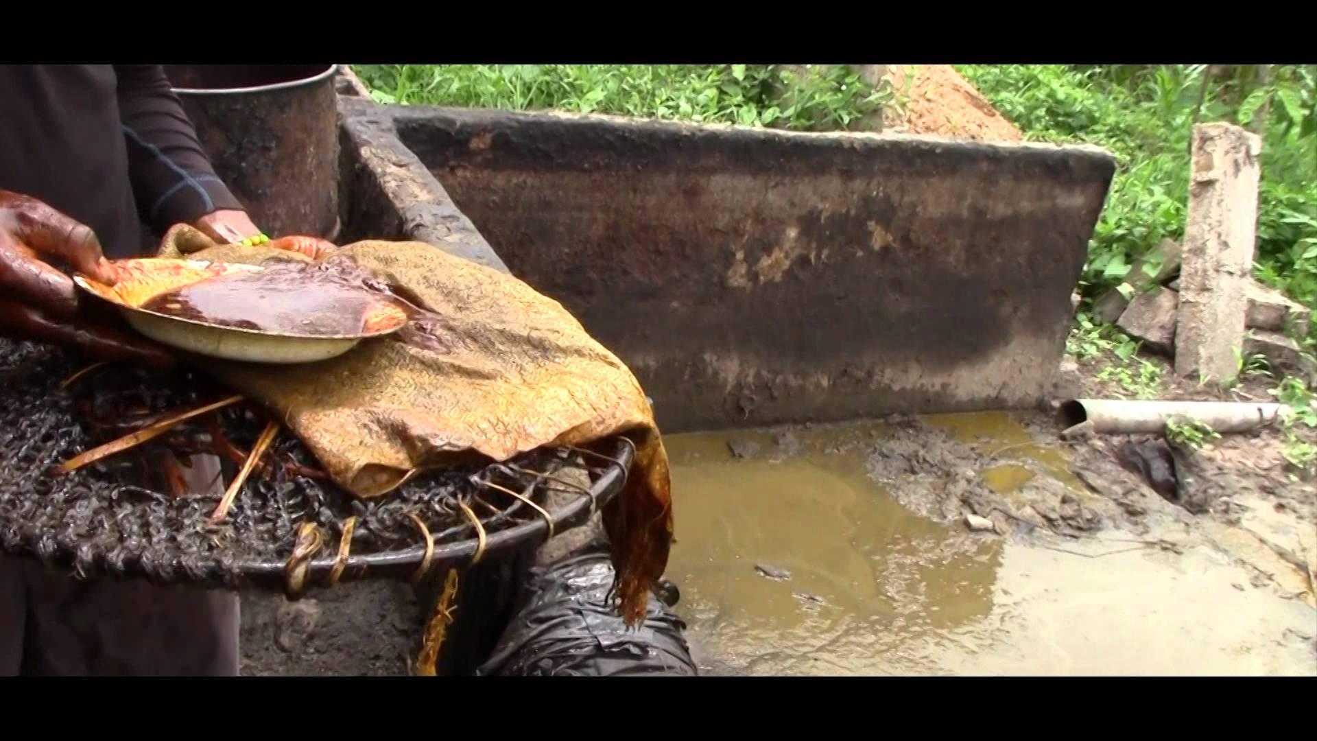 huile palme cameroun