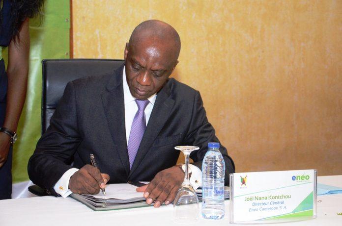 Directeur Général Eneo Cameroun